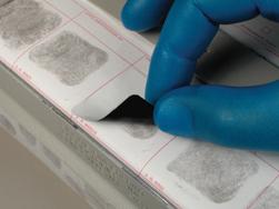 fingerprinttabs